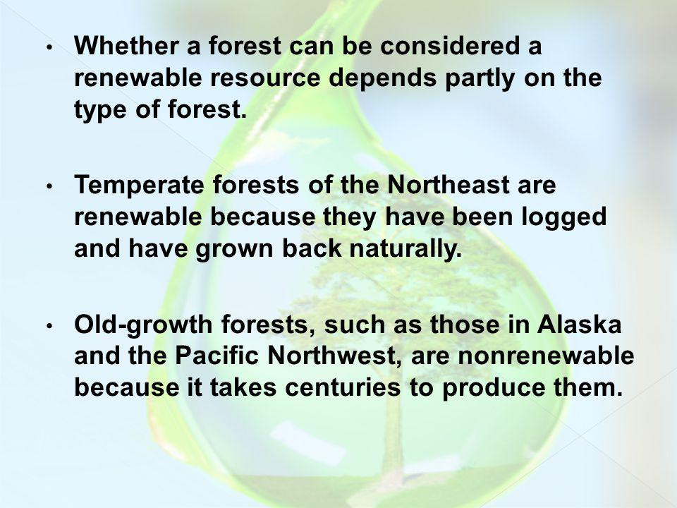 Whether a forest can be considered a renewable resource depends partly on the type of forest. Temperate forests of the Northeast are renewable because