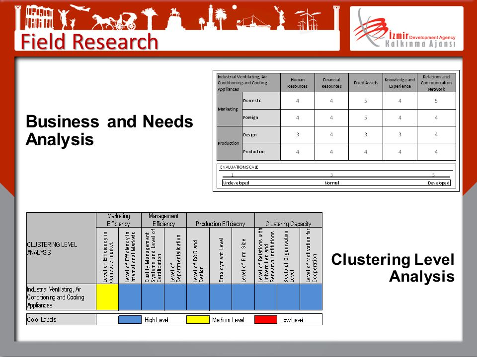 Field Research Business and Needs Analysis Clustering Level Analysis