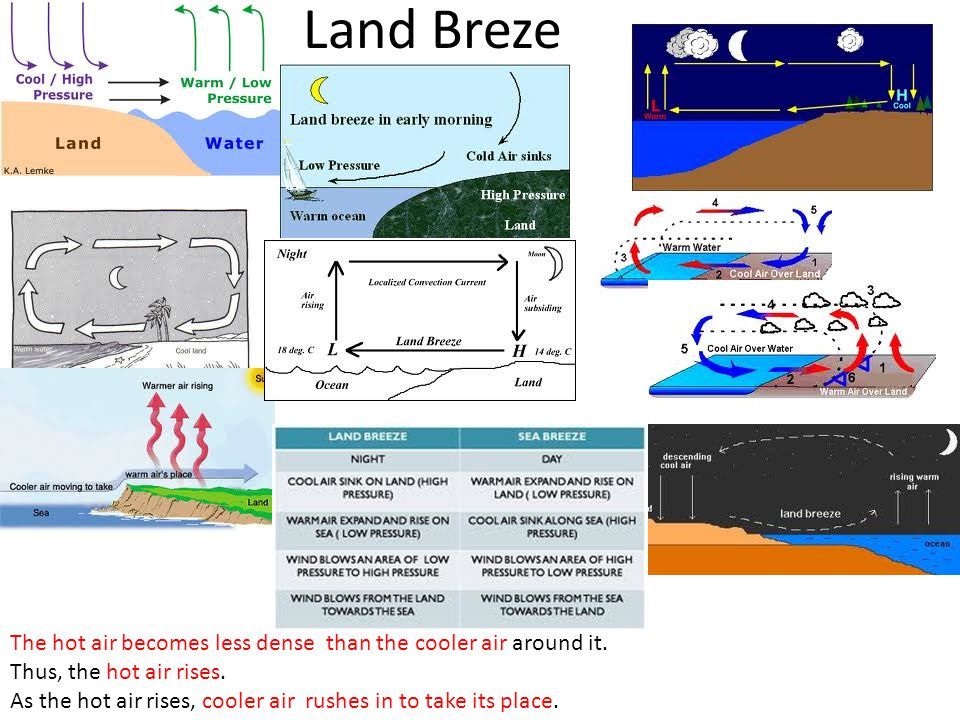 Land Breze The hot air becomes less dense than the cooler air around it. Thus, the hot air rises. As the hot air rises, cooler air rushes in to take i