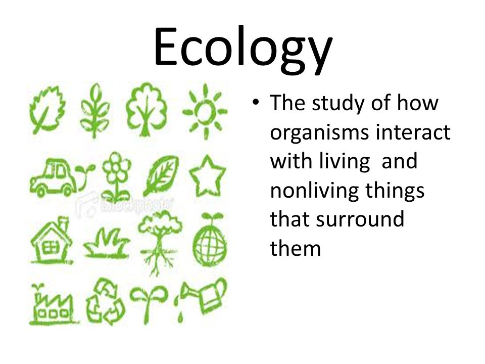 Ecology The study of how organisms interact with living and nonliving things that surround them