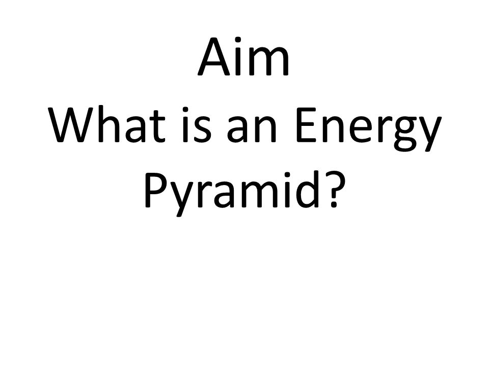 Aim What is an Energy Pyramid?