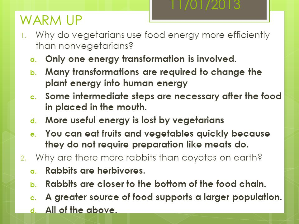 11/01/2013 WARM UP 1. Why do vegetarians use food energy more efficiently than nonvegetarians? a. Only one energy transformation is involved. b. Many
