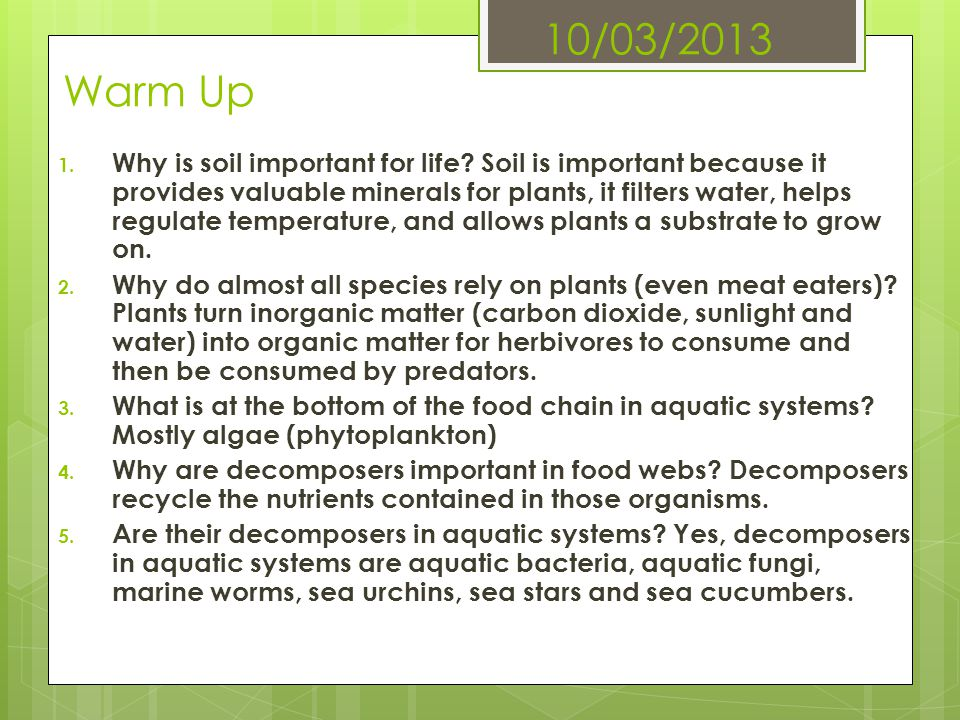 10/03/2013 Warm Up 1. Why is soil important for life? Soil is important because it provides valuable minerals for plants, it filters water, helps regu