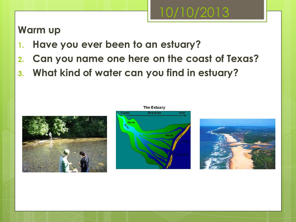 10/10/2013 Warm up 1. Have you ever been to an estuary? 2. Can you name one here on the coast of Texas? 3. What kind of water can you find in estuary?