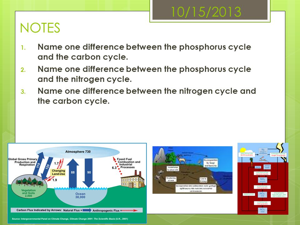 10/15/2013 NOTES 1. Name one difference between the phosphorus cycle and the carbon cycle. 2. Name one difference between the phosphorus cycle and the