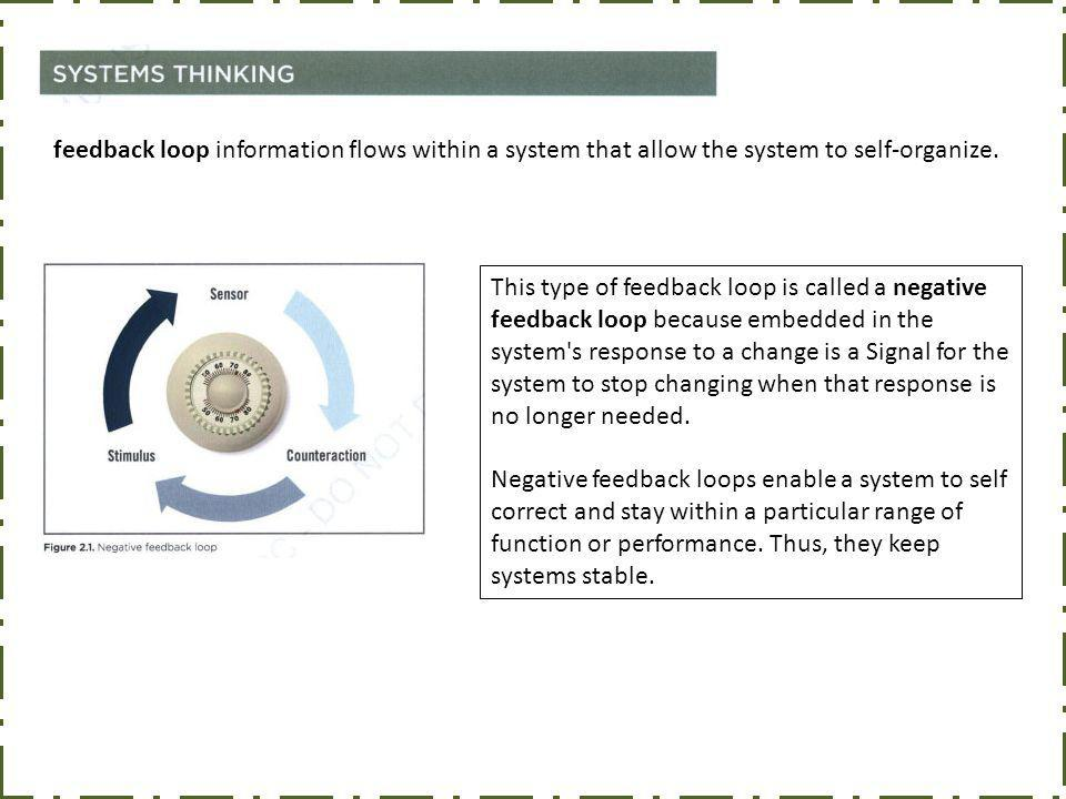 feedback loop information flows within a system that allow the system to self-organize.