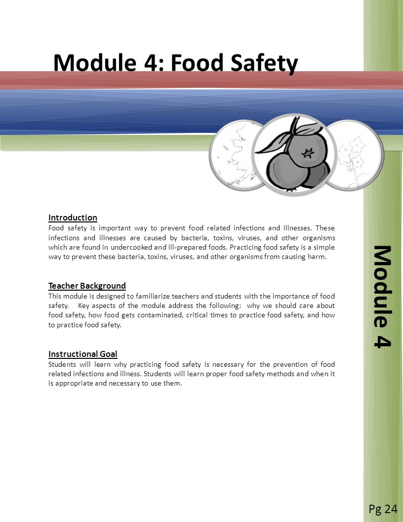 Module 4: Food Safety Module 4 Introduction Food safety is important way to prevent food related infections and illnesses.