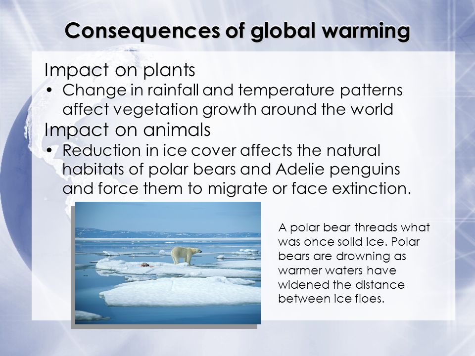 Consequences of global warming Impact on plants Change in rainfall and temperature patterns affect vegetation growth around the world Impact on animal