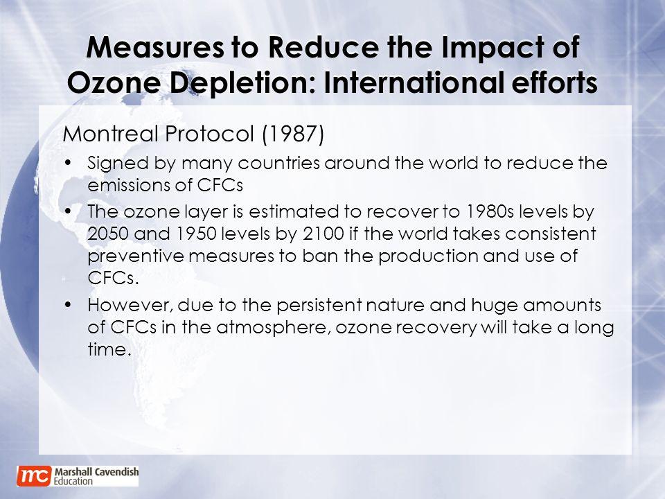 preventive measures of ozone depletion