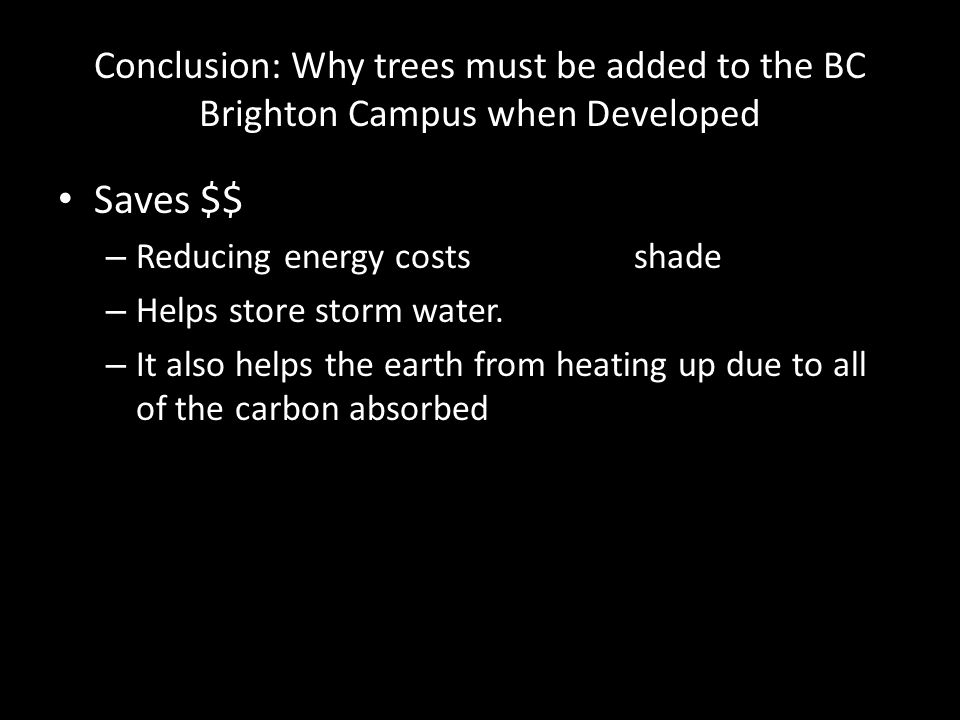Conclusion: Why trees must be added to the BC Brighton Campus when Developed Saves $$ – Reducing energy costsshade – Helps store storm water.