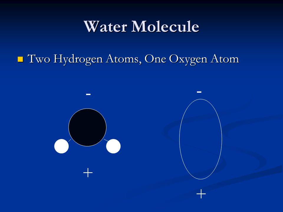 Water Molecule Two Hydrogen Atoms, One Oxygen Atom Two Hydrogen Atoms, One Oxygen Atom + + - -