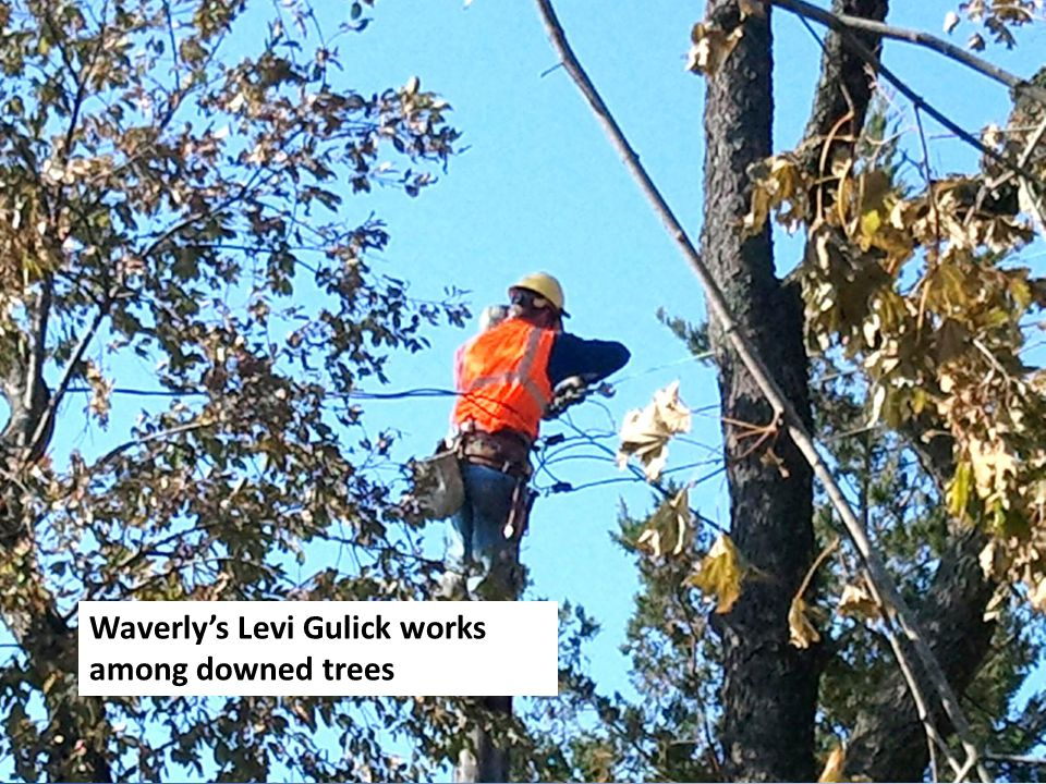 Waverlys Levi Gulick works among downed trees
