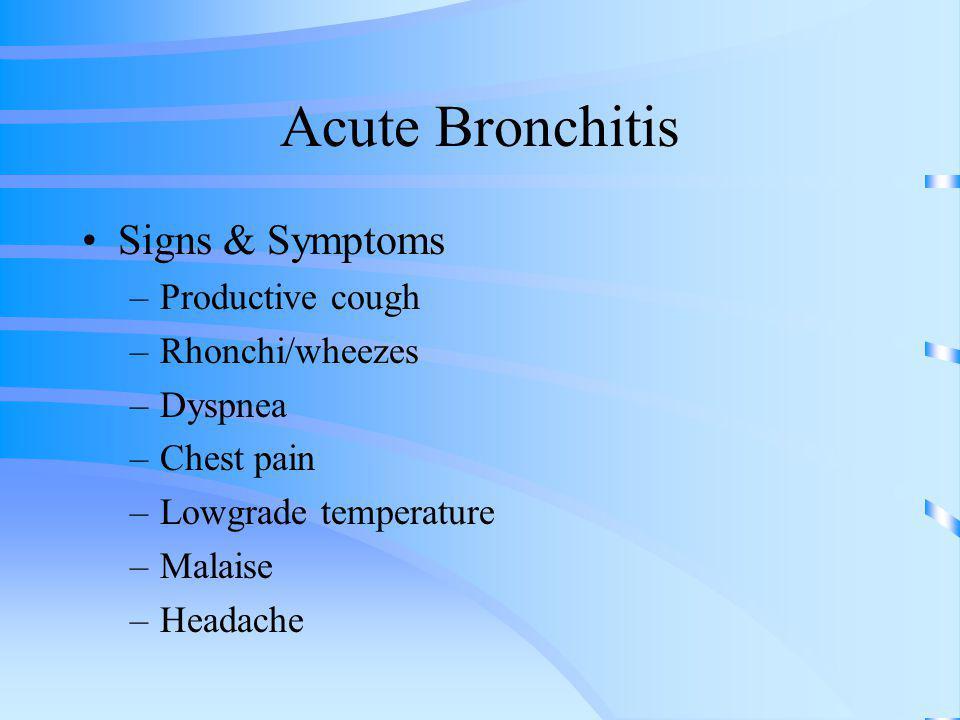 Acute Bronchitis Signs & Symptoms –Productive cough –Rhonchi/wheezes –Dyspnea –Chest pain –Lowgrade temperature –Malaise –Headache