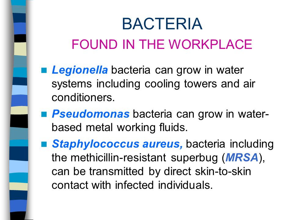 BIOLOGICAL CONTAMINANTS VAPORS Fungi and bacteria in indoor environments produce microbial volatile organic compounds (MVOCs) as a by-product of their
