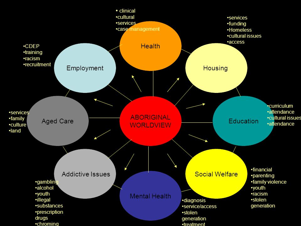 ABORIGINAL WORLDVIEW HealthHousingEducation Social Welfare Mental Health Addictive Issues Aged CareEmployment clinical cultural services case manageme