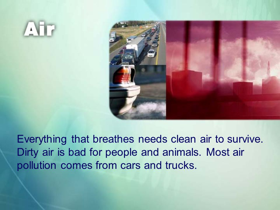 Everything that breathes needs clean air to survive.