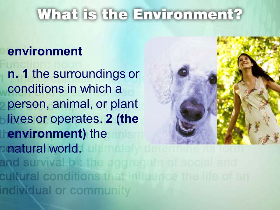 environment n. 1 the surroundings or conditions in which a person, animal, or plant lives or operates. 2 (the environment) the natural world.