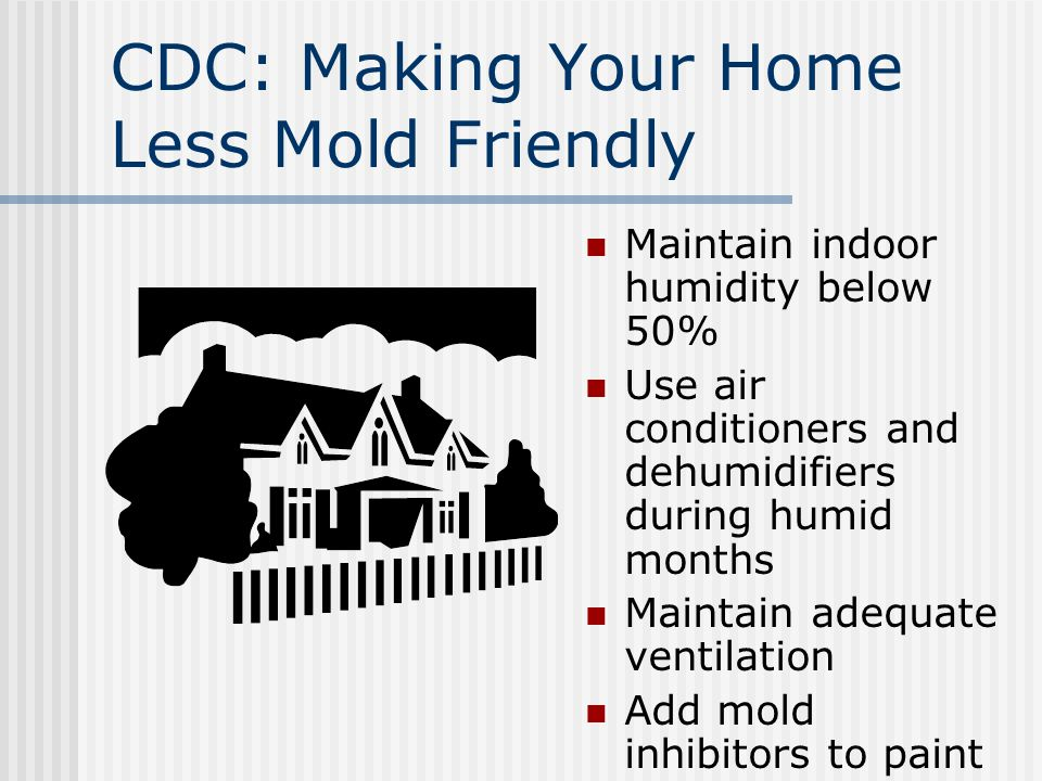 What Is Mold? Type of fungi Common indoor molds CDC position on heath concerns