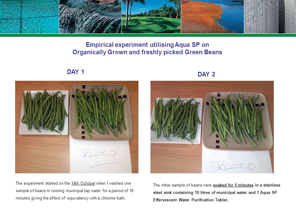 Empirical experiment utilising Aqua SP on Organically Grown and freshly picked Green Beans DAY 1 DAY 2 The experiment started on the 14th October when