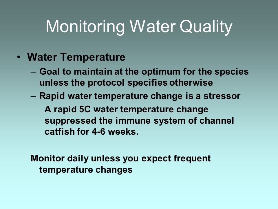 Monitoring Water Quality Water Temperature –Goal to maintain at the optimum for the species unless the protocol specifies otherwise –Rapid water tempe