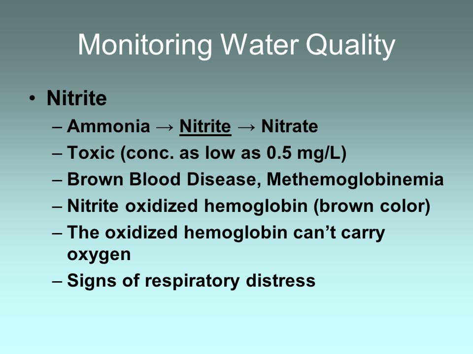 Monitoring Water Quality Nitrite –Ammonia Nitrite Nitrate –Toxic (conc. as low as 0.5 mg/L) –Brown Blood Disease, Methemoglobinemia –Nitrite oxidized