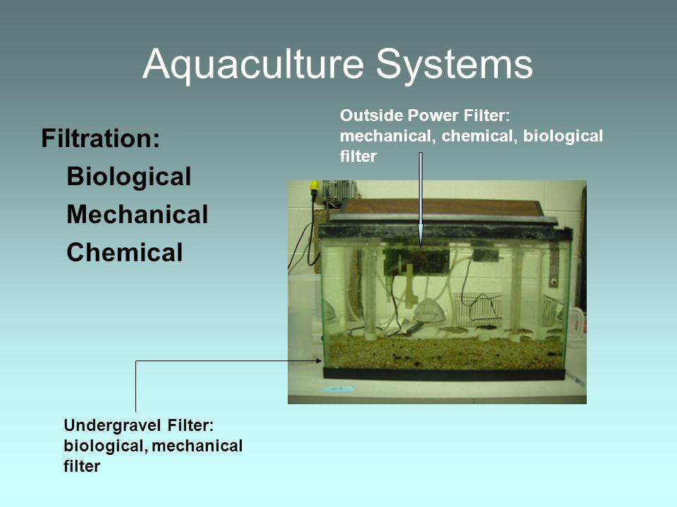 Aquaculture Systems Filtration: Biological Mechanical Chemical Undergravel Filter: biological, mechanical filter Outside Power Filter: mechanical, che