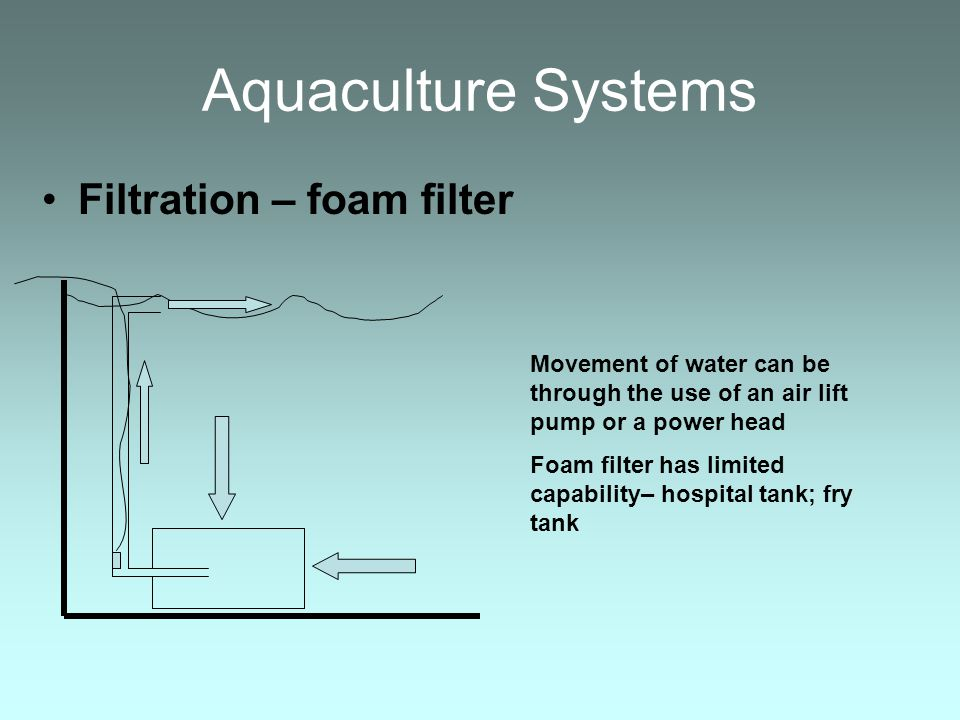 Aquaculture Systems Filtration – foam filter Movement of water can be through the use of an air lift pump or a power head Foam filter has limited capa