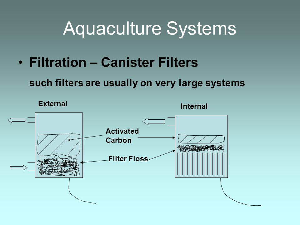 Aquaculture Systems Filtration – Canister Filters such filters are usually on very large systems External Internal Activated Carbon Filter Floss