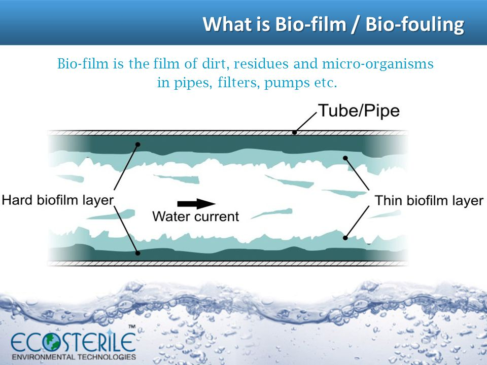 Bio-film is the film of dirt, residues and micro-organisms in pipes, filters, pumps etc.. What is Bio-film / Bio-fouling What is Bio-film / Bio-foulin