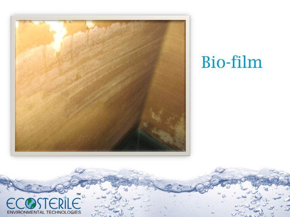 Bio-film