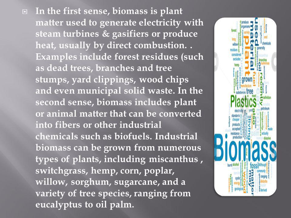 In the first sense, biomass is plant matter used to generate electricity with steam turbines & gasifiers or produce heat, usually by direct combustion