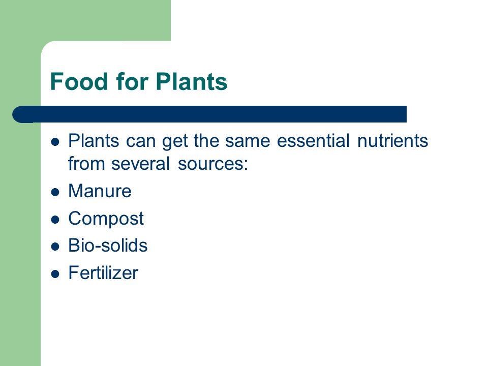 Food for Plants Plants can get the same essential nutrients from several sources: Manure Compost Bio-solids Fertilizer