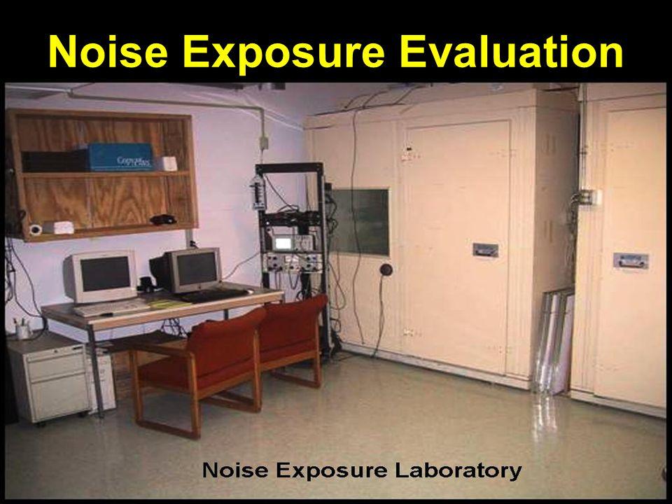 Noise Exposure Evaluation