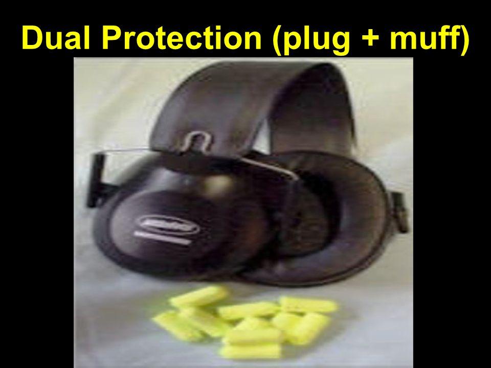 Dual Protection (plug + muff)