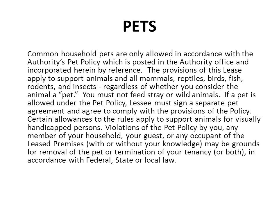 PETS Common household pets are only allowed in accordance with the Authoritys Pet Policy which is posted in the Authority office and incorporated here