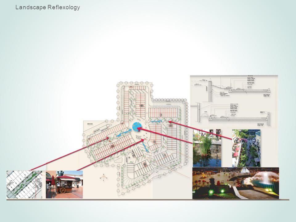 Landscape Reflexology