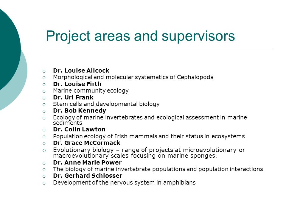 Project areas and supervisors Dr.