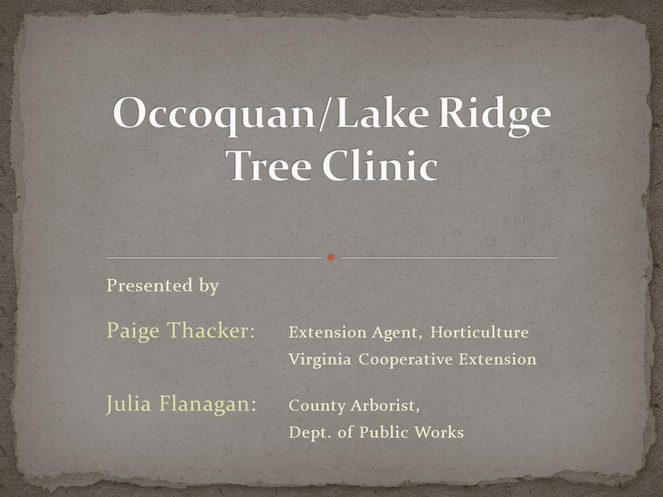 Presented by Paige Thacker: Extension Agent, Horticulture Virginia Cooperative Extension Julia Flanagan: County Arborist, Dept.