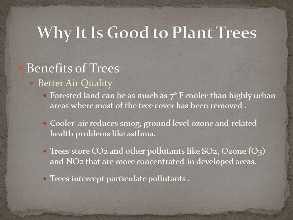 Benefits of Trees Better Air Quality Forested land can be as much as 7° F cooler than highly urban areas where most of the tree cover has been removed.