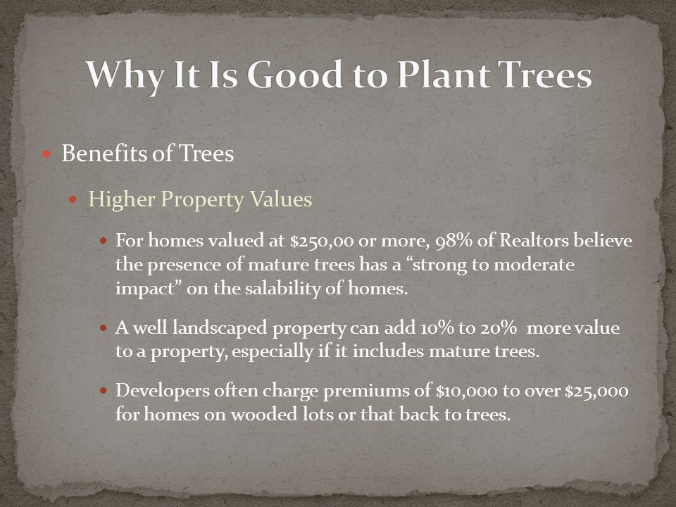 Benefits of Trees Higher Property Values For homes valued at $250,00 or more, 98% of Realtors believe the presence of mature trees has a strong to moderate impact on the salability of homes.