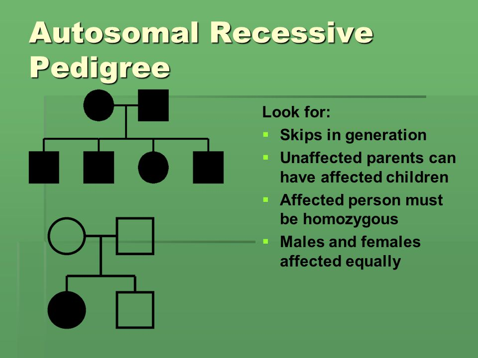 Autosomal Recessive Pedigree Look for: Skips in generation Unaffected parents can have affected children Affected person must be homozygous Males and