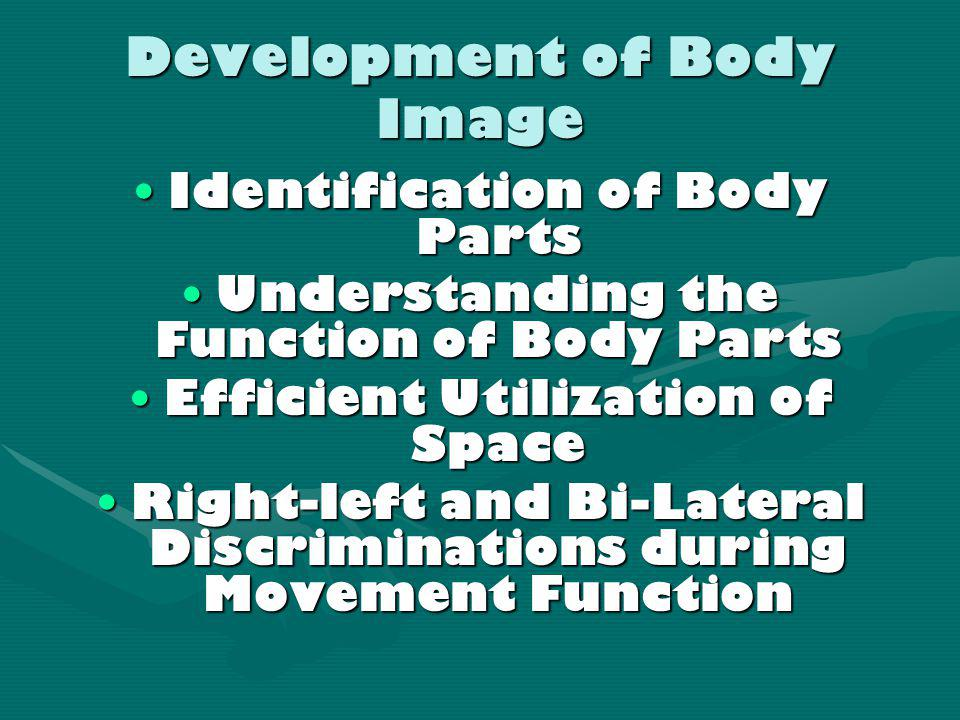 Visual-Motor Coordination the ability to coordinate vision with bodyVisual-Motor Coordination the ability to coordinate vision with body movements mov