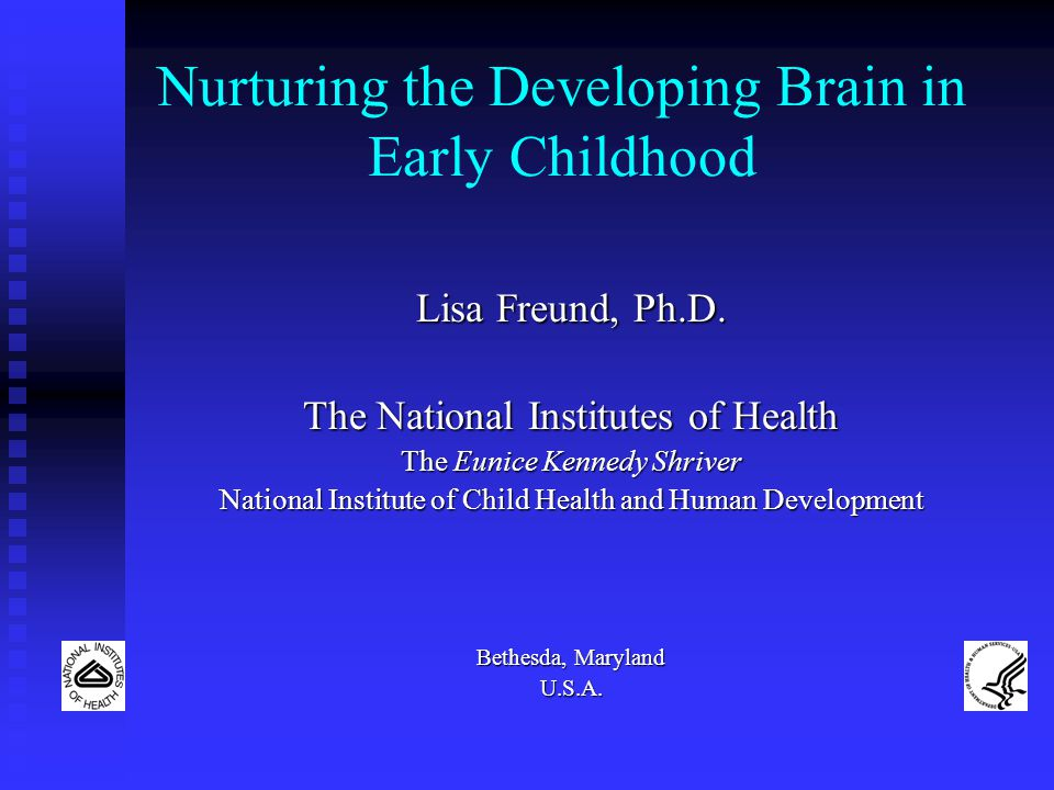 Nurturing the Developing Brain in Early Childhood Lisa Freund, Ph.D. The National Institutes of Health The Eunice Kennedy Shriver National Institute o