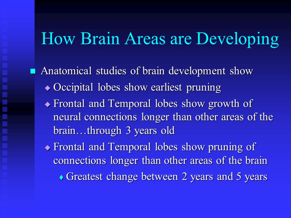 How Brain Areas are Developing Anatomical studies of brain development show Anatomical studies of brain development show Occipital lobes show earliest