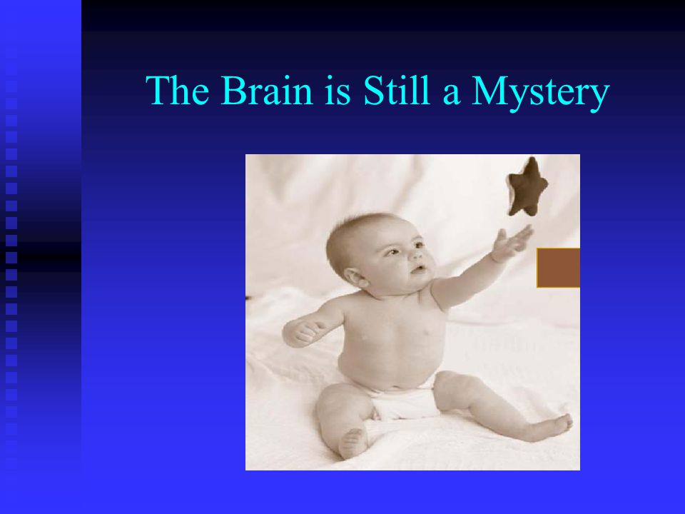 The Brain is Still a Mystery
