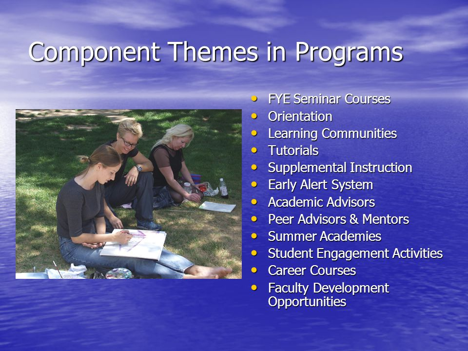 Component Themes in Programs FYE Seminar Courses FYE Seminar Courses Orientation Orientation Learning Communities Learning Communities Tutorials Tutorials Supplemental Instruction Supplemental Instruction Early Alert System Early Alert System Academic Advisors Academic Advisors Peer Advisors & Mentors Peer Advisors & Mentors Summer Academies Summer Academies Student Engagement Activities Student Engagement Activities Career Courses Career Courses Faculty Development Opportunities Faculty Development Opportunities