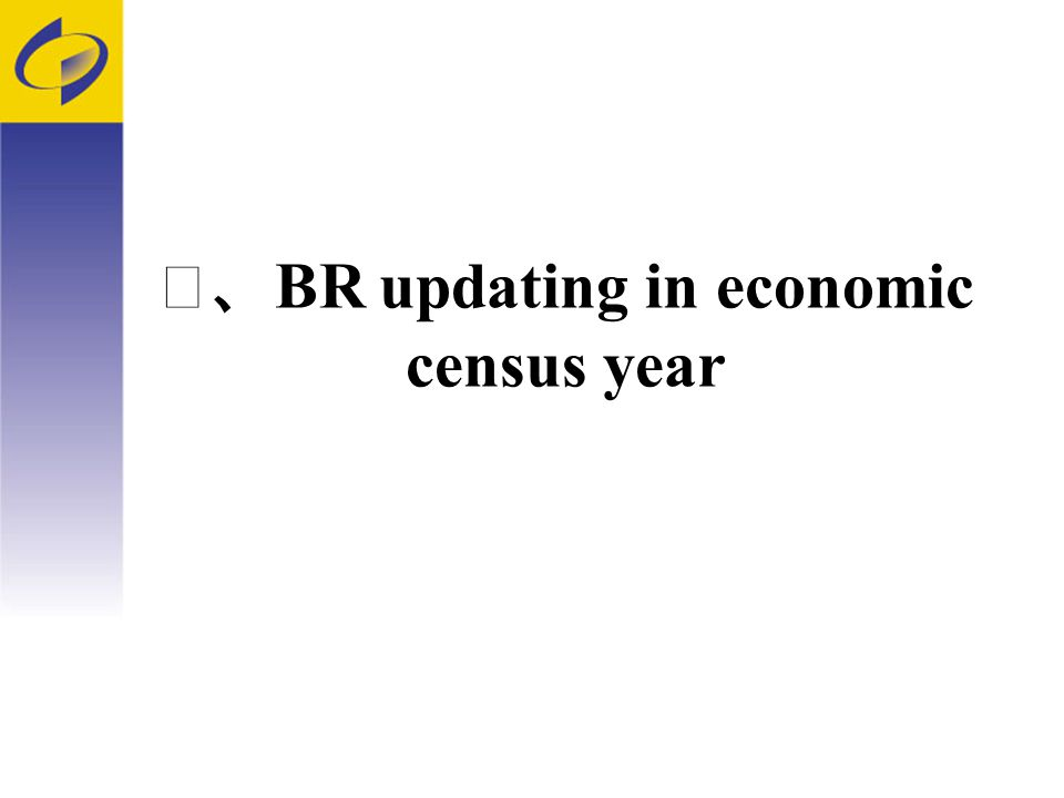 BR updating in economic census year