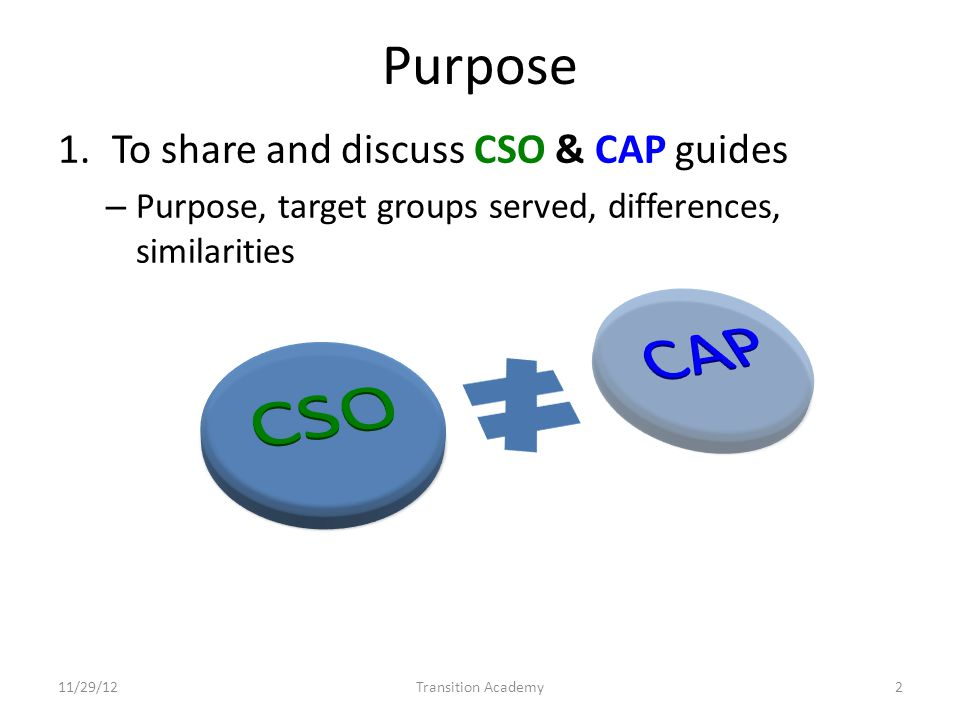 Purpose 1.To share and discuss CSO & CAP guides – Purpose, target groups served, differences, similarities 11/29/12Transition Academy2