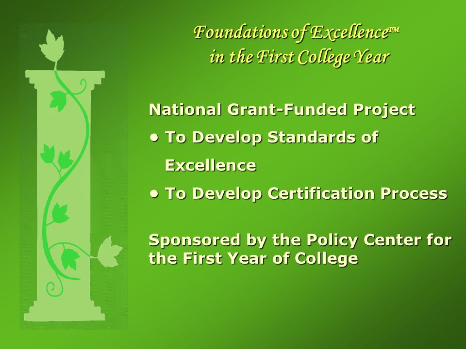 Foundations of Excellence TM in the First College Year National Grant-Funded Project To Develop Standards of To Develop Standards of Excellence Excellence To Develop Certification Process To Develop Certification Process Sponsored by the Policy Center for the First Year of College