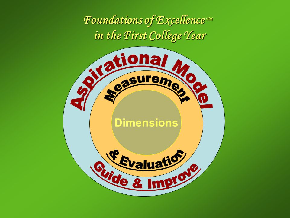 Foundations of Excellence TM in the First College Year Dimensions